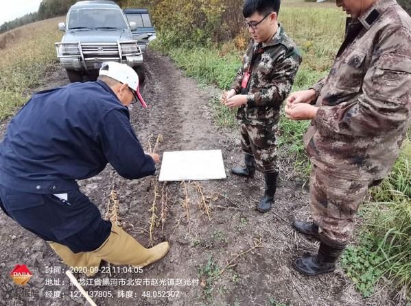 灾害无情,大家有爱 -- 大家财险积极应对黑龙江重大农害