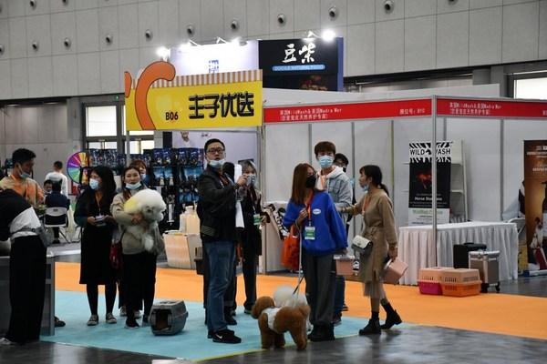 萌动全城 南京宠物展今日空港国博盛大开幕