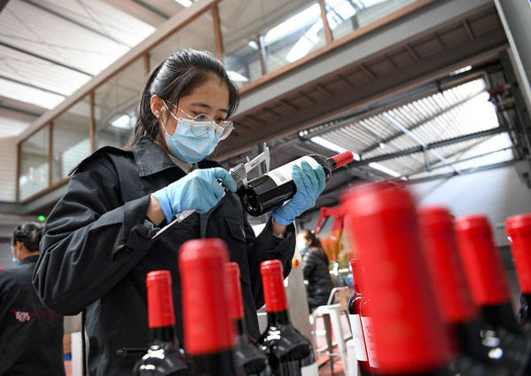 A staff member conducts sampling inspection to the finished wine products at the Xige Estate in northwest China's Ningxia Hui Autonomous Region, April 10, 2020. Workers of wine companies in the east Helan Mountain area are busy with farm work in grape plantation and making efforts to take orders to promote local wine industry.