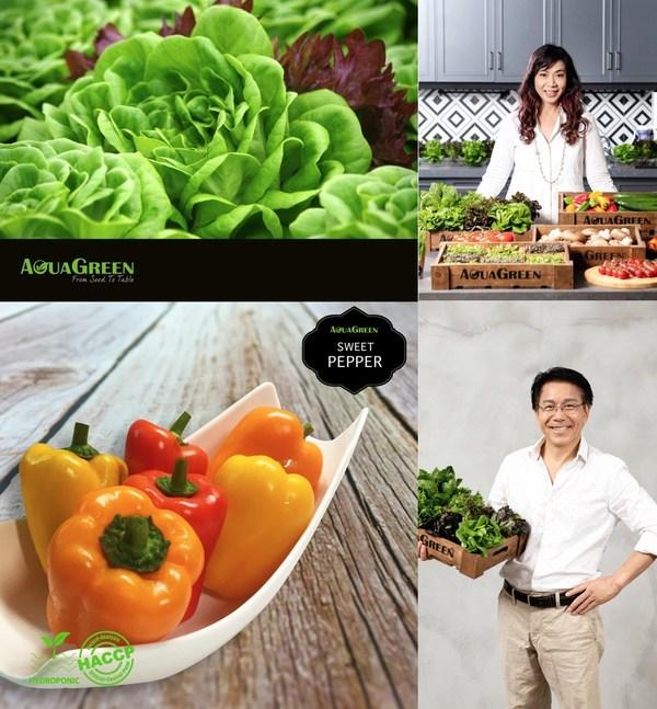 https://mma.prnasia.com/media2/1322058/aqua_green.jpg?p=medium600