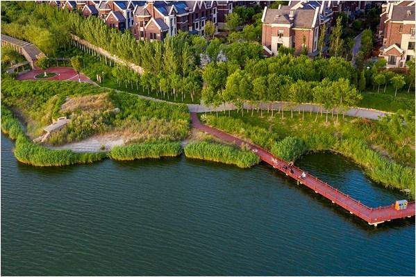 An aerial view of Binhai.