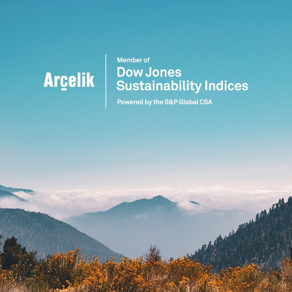 Arcelik Dow Jones Sustainability Indices 2020