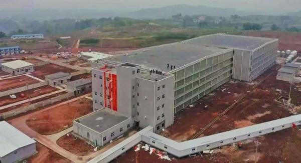 新希望六和首个楼房养猪项目顺利完成竣工交付