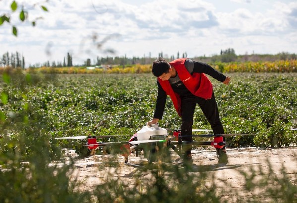 新农人在田间使用农业无人机作业
