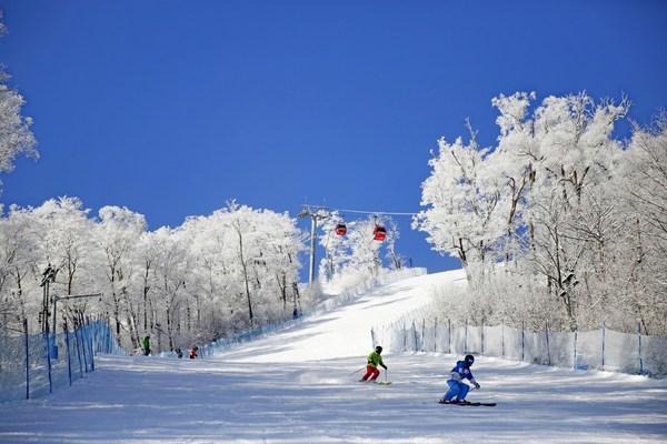 国内冬季出游需求空前高涨