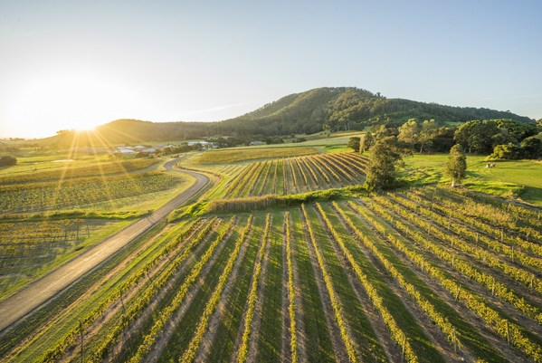Destination New South Wales - Shoalhaven: Vineyards by the ocean