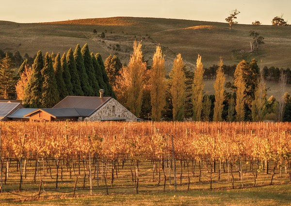 Destination New South Wales - Aussie Wine Weekend: Explore the Southern Highlands' Food & Wine Trail