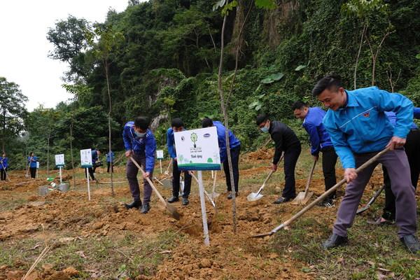 地元の人々が植樹活動に参加