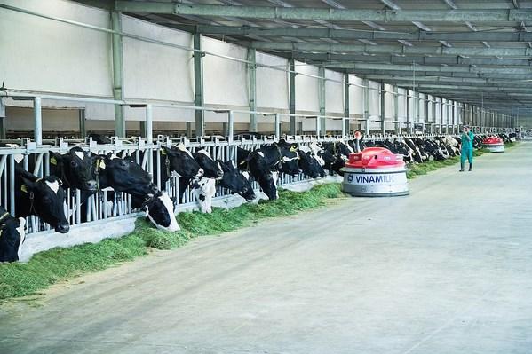 Vinamilkは16の最先端の工場と13の酪農場を持つ世界のトップ50の酪農会社の1つ