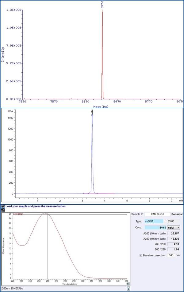 7天一次核酸检测,金唯智12年经验引物探针足量保障