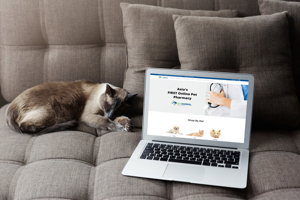 Asia's First Online Pet Pharmacy Goes Live - Female Tech Founders Launch My Animal Dispensary