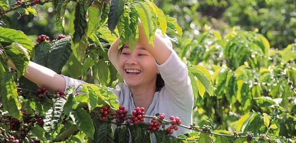 """""""雀巢咖啡计划""""彰显咖啡的力量,改善更多农户的生活水平"""