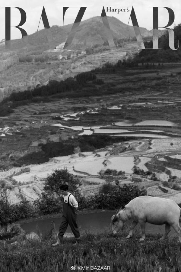 """《时尚芭莎》受邀WWF 携手朱一龙赴云南为""""保护生物多样性""""发声"""