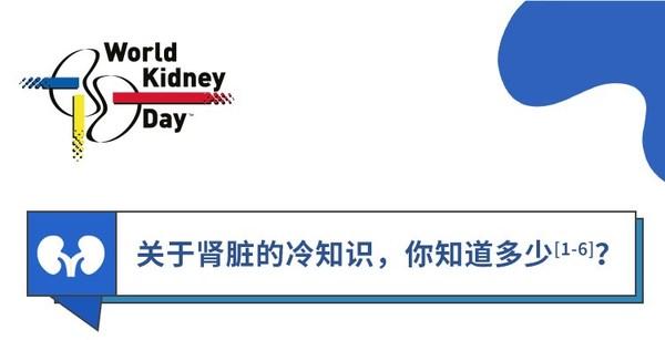 世界肾脏日:百特呼吁警惕肾脏病风险