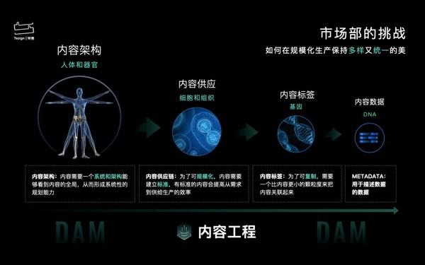 特赞内容数据资产管理(DAM),多场景赋能内容工程