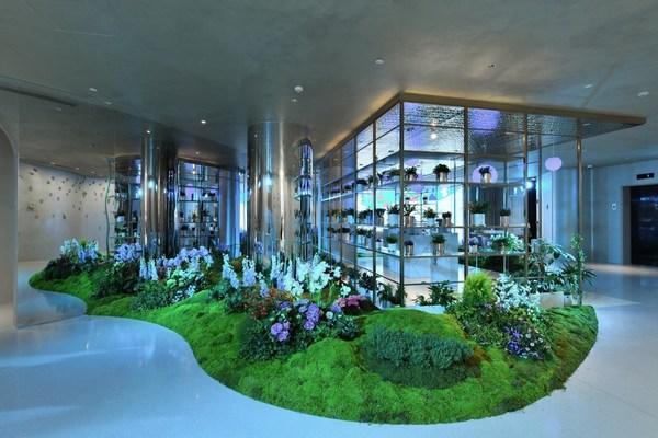 美轮美奂的孟买蓝宝石金酒花园揭秘品牌草本植物原料