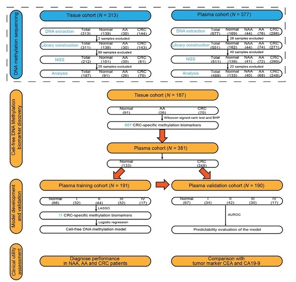 Figure 1. The study workflow chart.