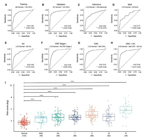 Figure 4. The performance and risk score of the cell-free DNA methylation model in detecting adenoma and CRC patients.
