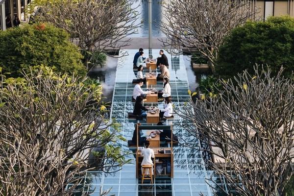 Lohkah七尚酒店推出中国茶&世界茶文化项目,揭序全新户外水央茶空间