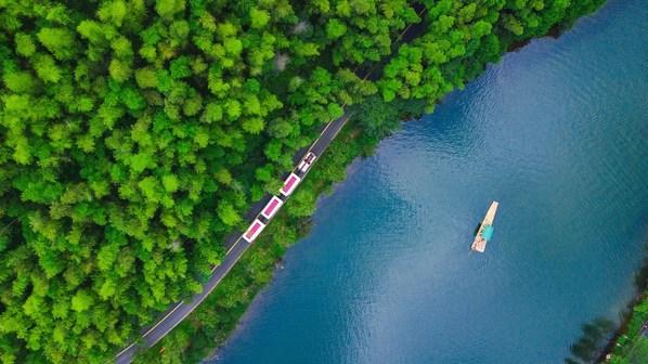 観光業界のイノベーション:リツ陽お茶祭リが体験型観光と持続可能な経済の融合のベンチマークを設定