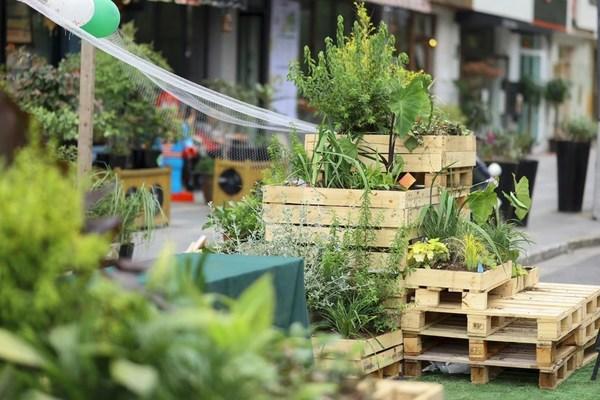 【社区花园节】自然艺术展览