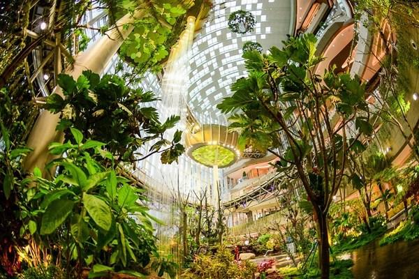 """""""重庆光环""""设有纵跨七层高达42米的室内绿色植物景观,以及动静交互主题的社交空间。"""