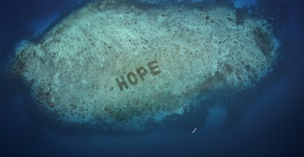 SHEBA® unveils Hope Reef: World's Largest Coral Restoration Program Announced