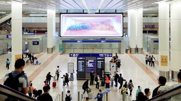 上海浦东T1国内到达LED 约45平方米