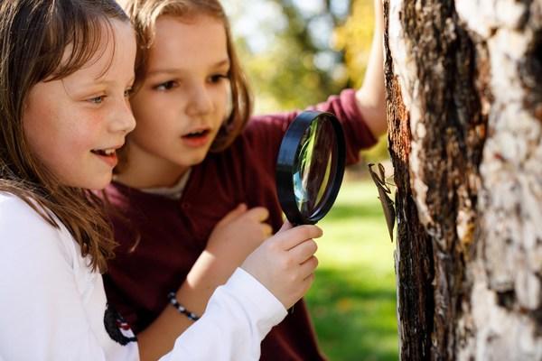 2021培生全球学习者调查:疫情造就了更加坚强的一代青年