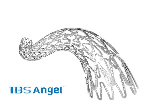 先健科技IBS Angel(TM)铁基可吸收支架系统获马来西亚注册批准