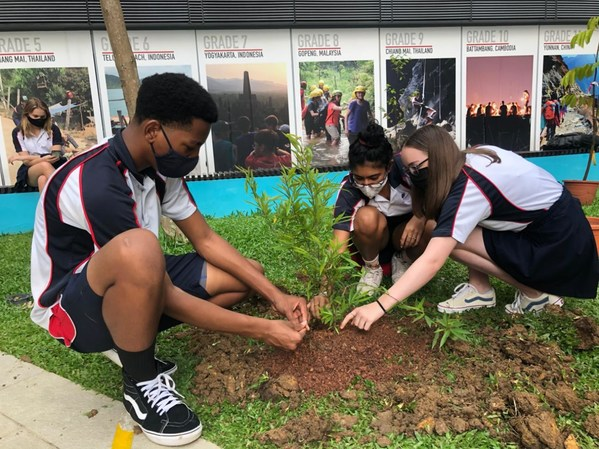 #Goinggreen with Stamford American International School: Beyond Cultivating Greener Pastures