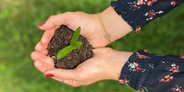 依托可持续发展,实现碳中和:德国伍尔特集团在行动