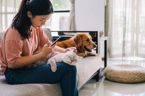 ZumVet在香港推出首個虛擬獸醫平臺