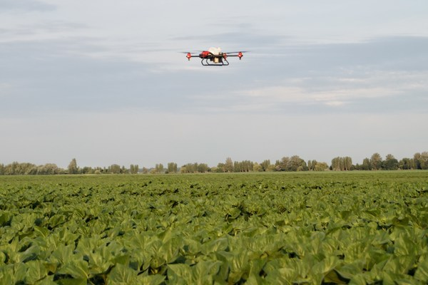 XAG Spray Drones Come as Emergency Help to Secure Ukraine Sunflower