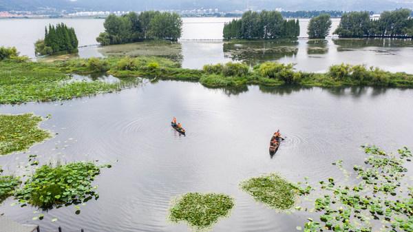 Xinhua Silk Road - 중국 남서부 쿤밍, 습지 보존 노력으로 생태 개선