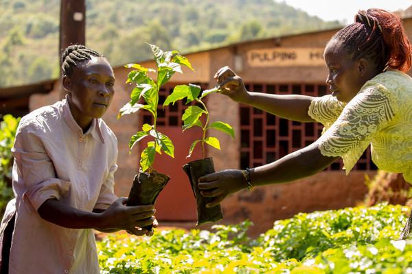 '약속 이행 촉구' - 180만 공정무역 농민들이 전 세계 지도자들에게 COP26 기후 변화 대응 촉구