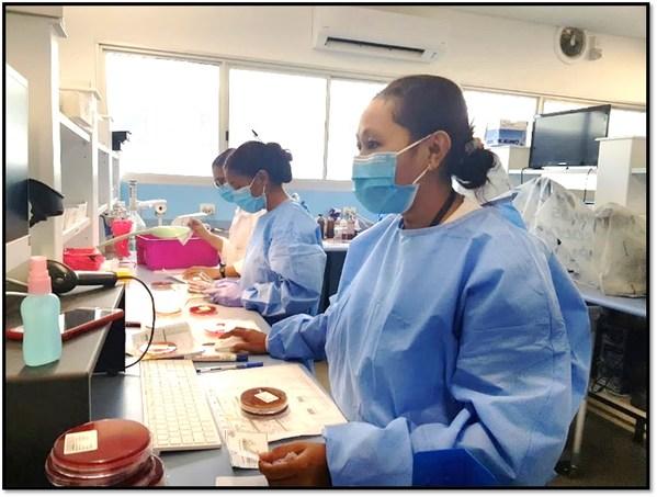 Phần mềm phòng thí nghiệm CGM hiện đại hóa ngành y tế tại Timor-Leste