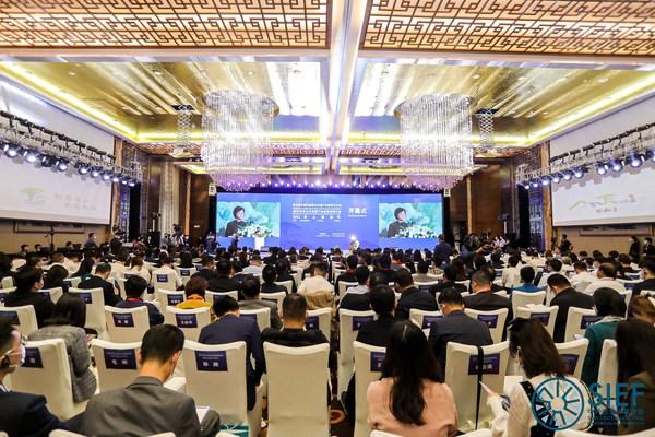 第五届中国非物质文化遗产传统技艺大展、2021中外文化创意产业安徽发展大会暨黄山旅游节盛大开幕