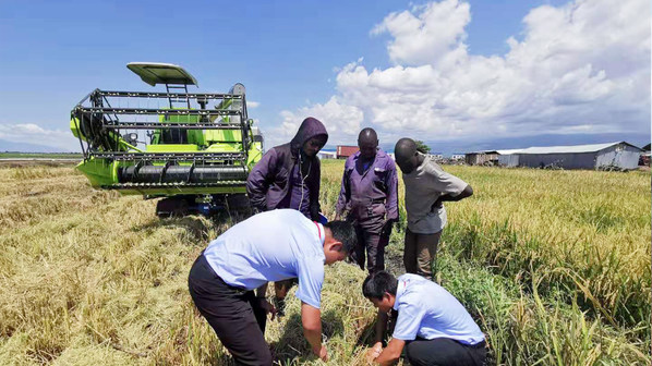 Zoomlion Agricultural Machinery Sambut Hari Makanan Sedunia 2021 dengan Tindakan untuk Tingkatkan Produktiviti Makanan Global